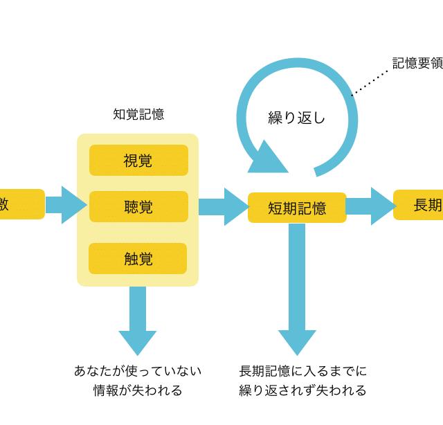 人の記憶の仕組み:UXデザイナーへのヒント | UX TIMES