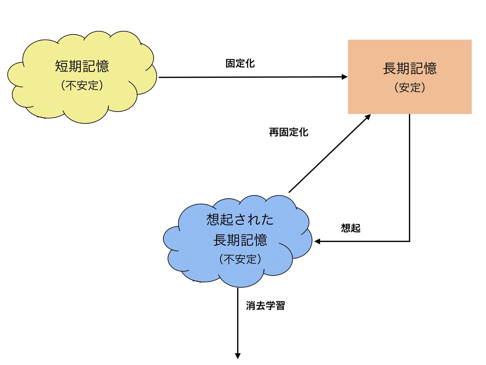 記憶想起後のプロセス