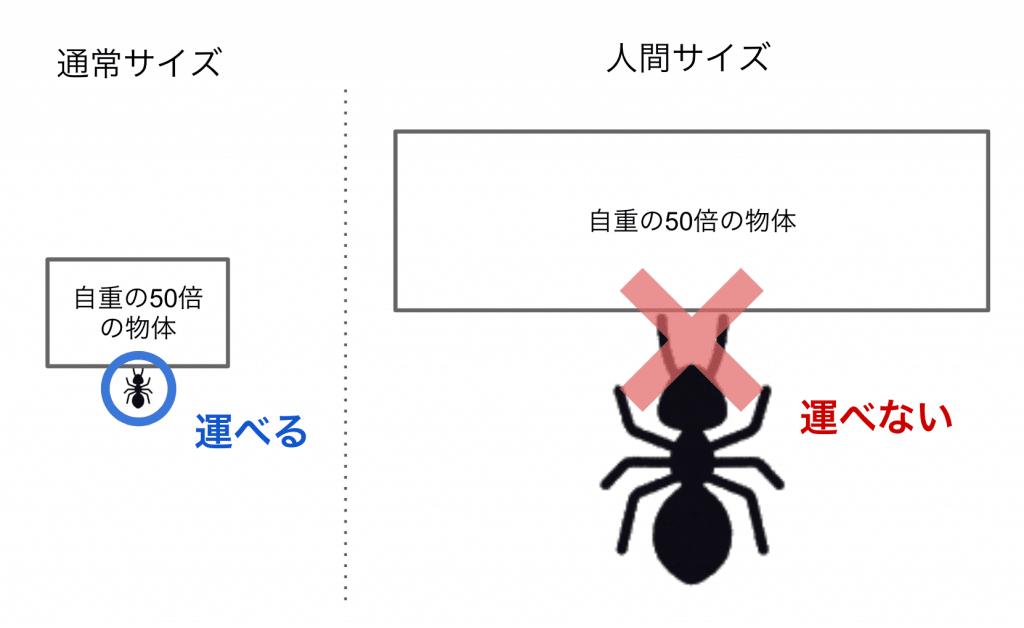 アリにおけるスケーリングの誤解例